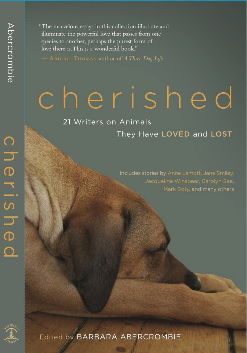 Cherished_cover_final_2