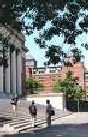 Harvard_library_6